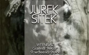 """""""LANDSZAFTY"""" - JUREK SITEK"""